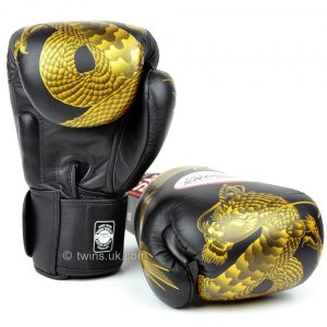 Twins Black Dragon FBGV-23 Boxing Gloves