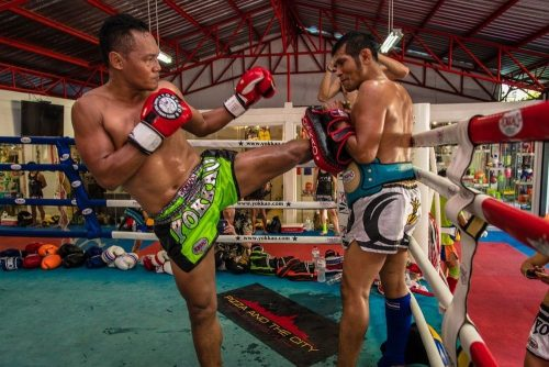 Image Muay Thai training on the minotaur fight store, stocking the latest muay thai gear like muay thai shorts, muay thai gloves, muay thai boxing oil and more.