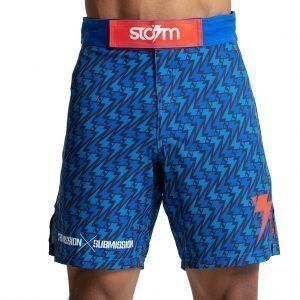 Storm Standard Issue Board Shorts Blue